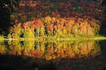Fall foliage - view from lake house cabin, Oct. 1st. 2014
