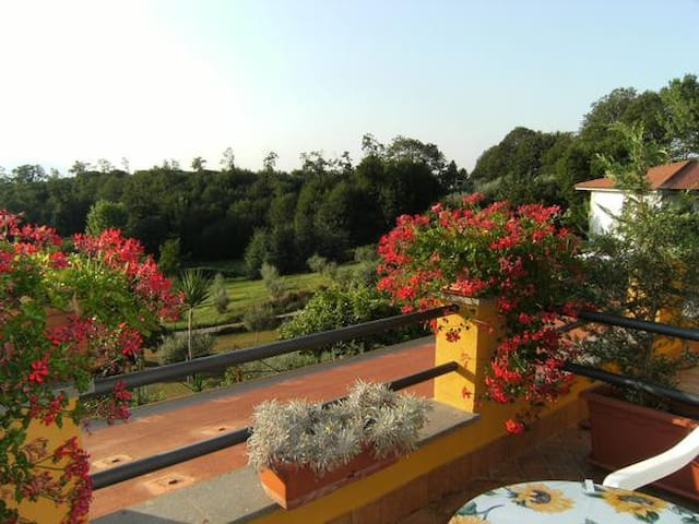 B&B - House Rental Arancia e Limone - Lariano - House