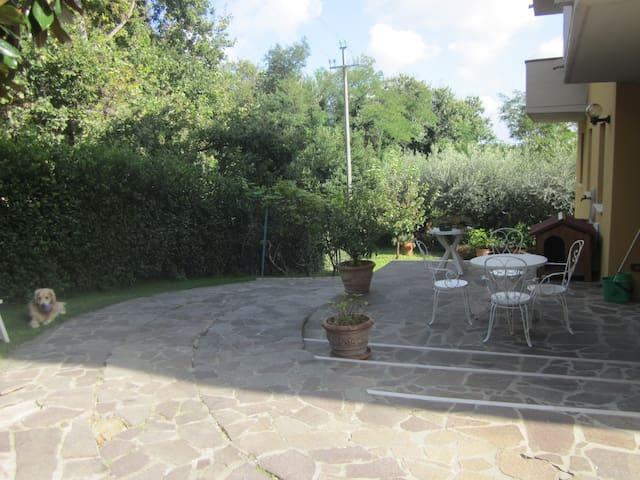 B&B AGORA' NOVILARA (PESARO) - Pesaro - Appartement