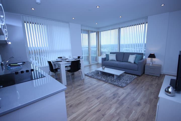 CT Fully Serviced Apartment, Free Wi-Fi, SKY - Reading - Daire