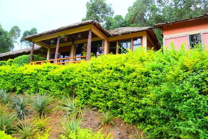 Cozy eco friendly rooms in Bwindi (kanungu/Buhoma)