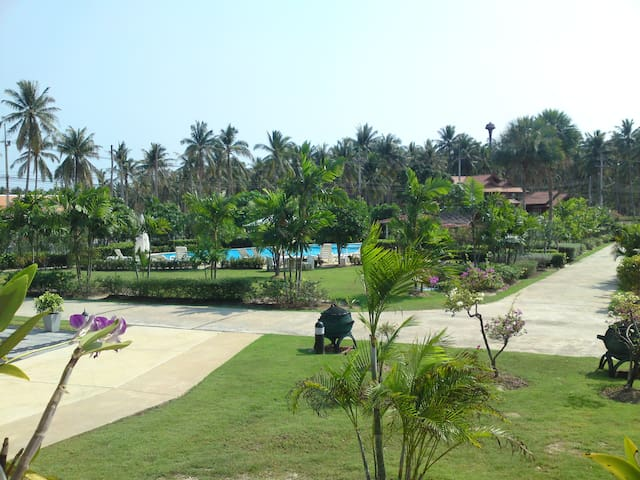 Poolview from the terrace