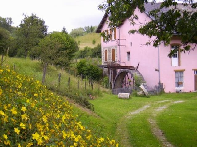 Le moulin rose - Chirens - Apartment