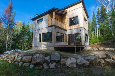 Maison collée au parc Dufresne