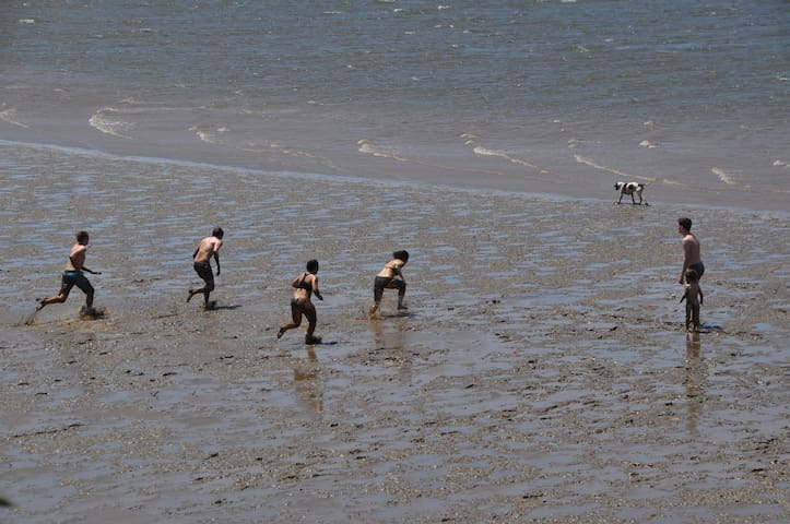 Best fun in the mud at very low tide