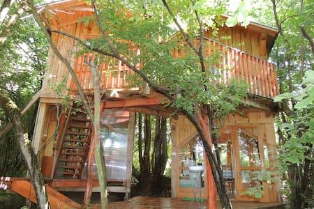 Treehouse in a Bio Farm