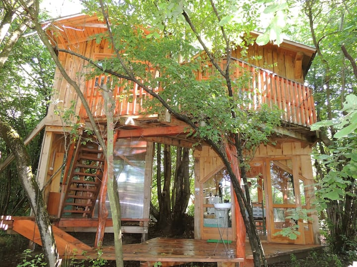 Treehouse in a Bio Farm