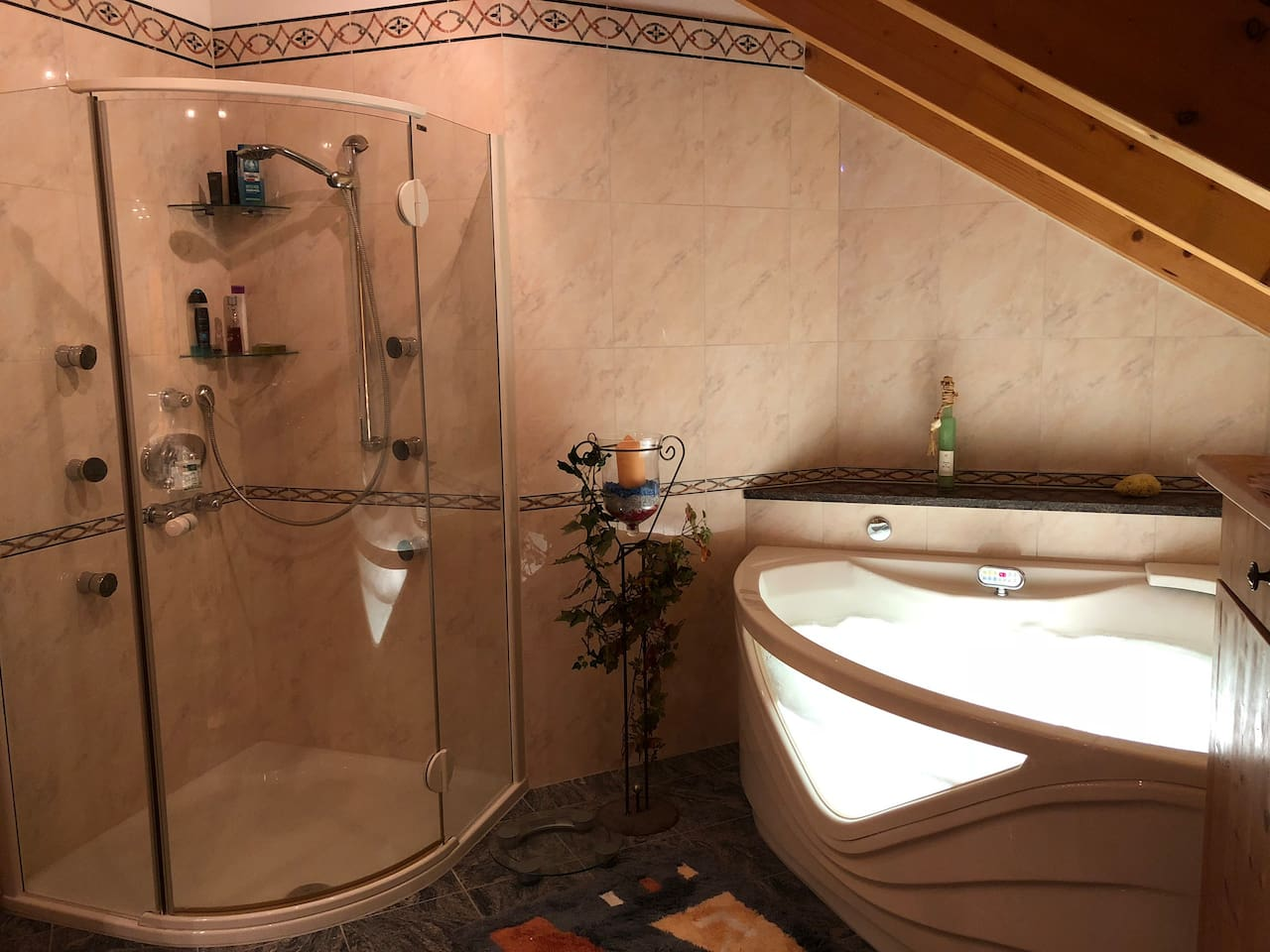 Private bathroom with jacuzzi