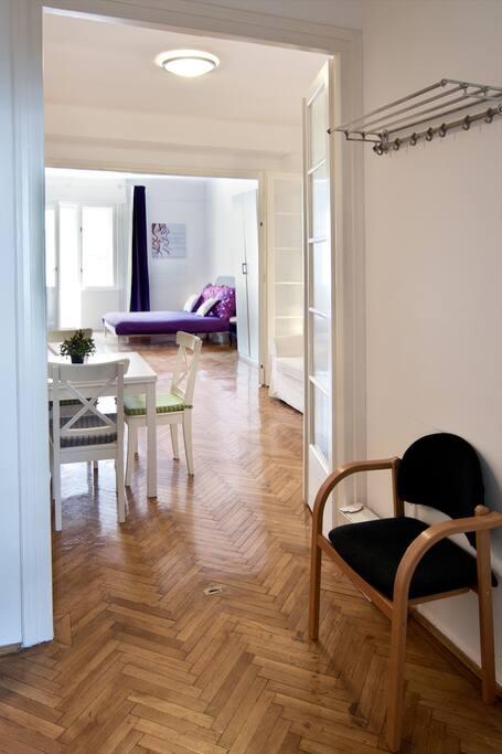 Entrance/Living room/Master Bedroom