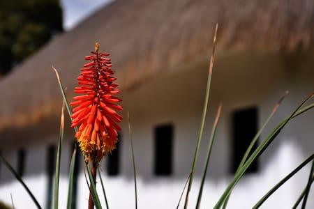 Hacienda Normandía-whole house - Tocancipa