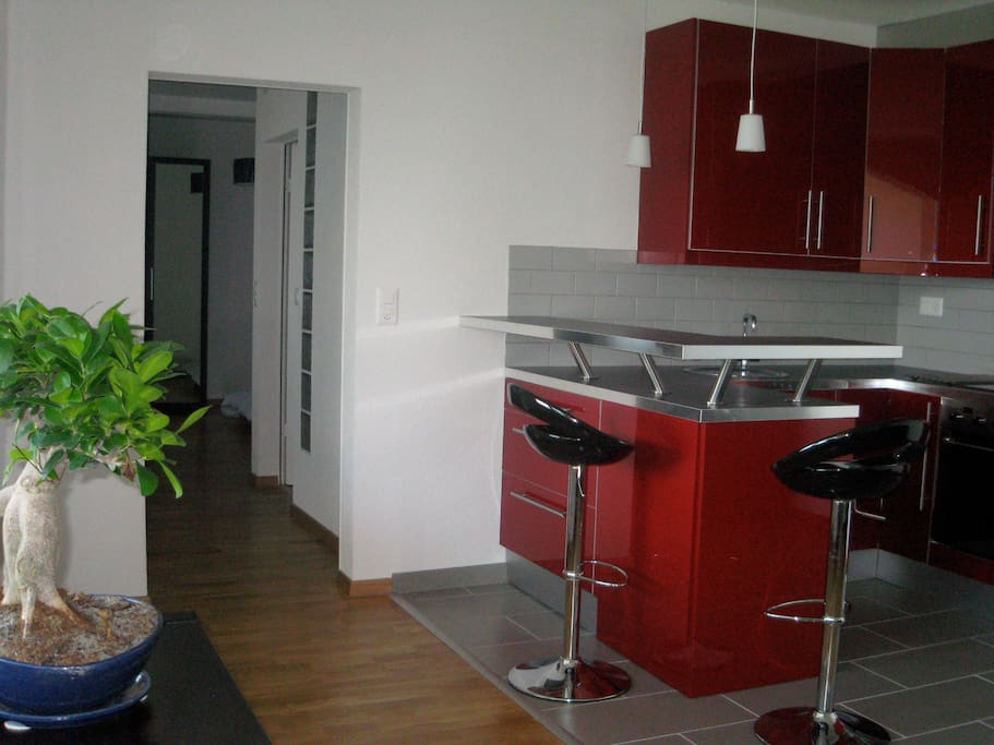 Beautiful apt by the lake appartements louer ani res for Kitchen 713 reservations