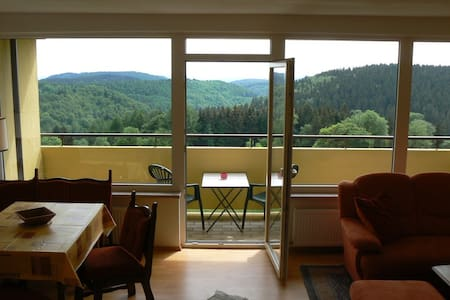 Hiking, sledding, skiing in Harz - Braunlage - Apartment