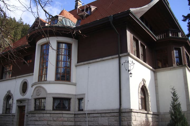 Jugendstilvilla im Schwarzwald - Sankt Blasien