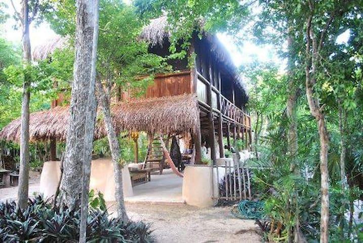 Beatiful Jungle Cabin, with Cenote - Akumal - Blockhütte