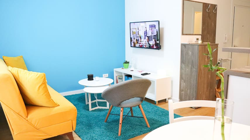 Turquoise Spark Suite