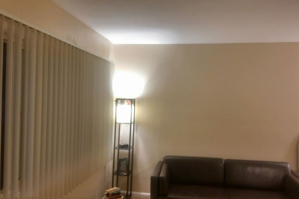 Large living room windows, leather couch