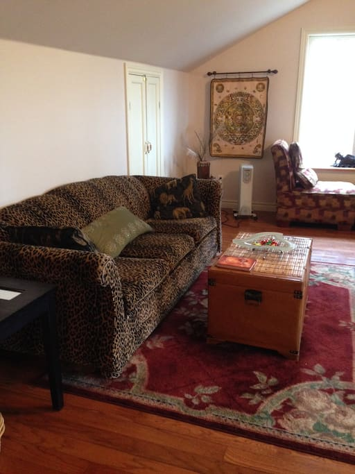 Open concept living room and kitchen area. TV, antenna, and extensive DVD collection