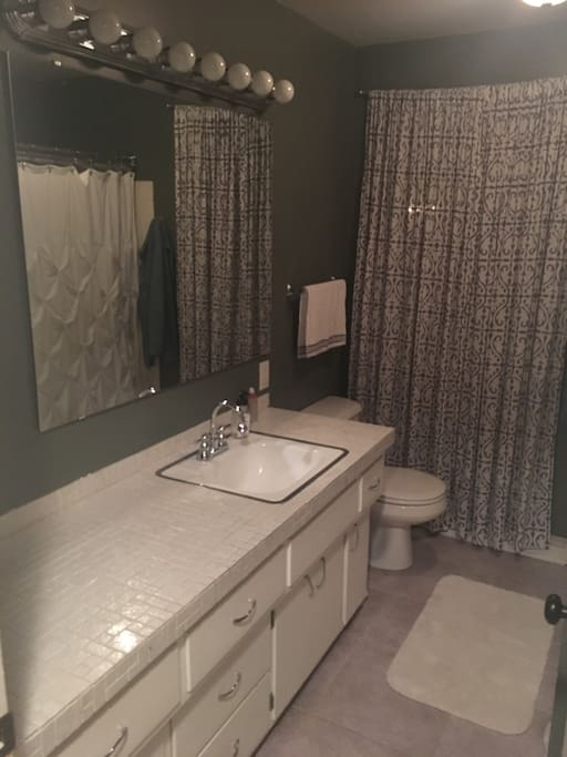 Large First Floor Bath with Shower/Tub
