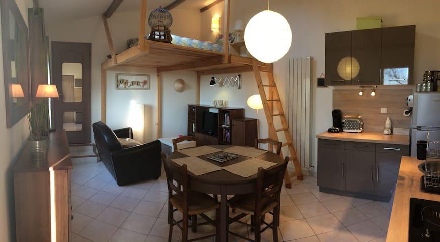Studio au milieu des vignes - Vacqueyras - Appartement