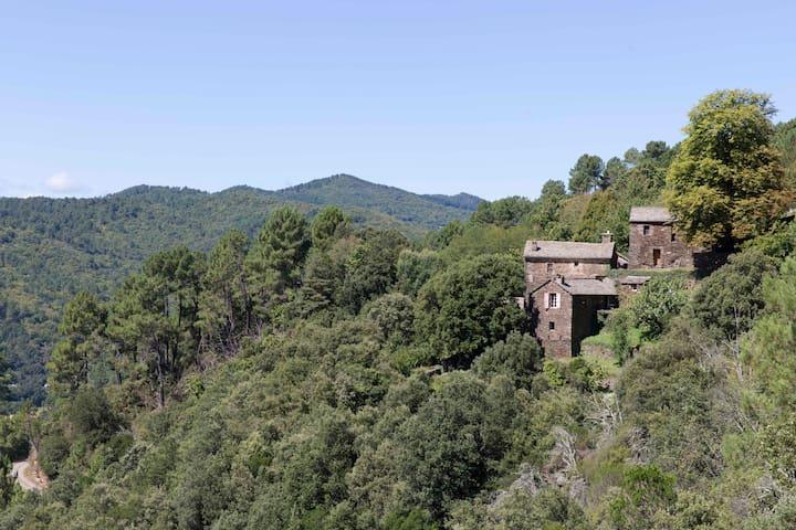Cevenol Farmhouse - Saint-Étienne-Vallée-Française - Casa