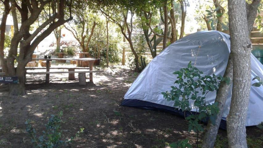 Camping para 2 en Punta del Este