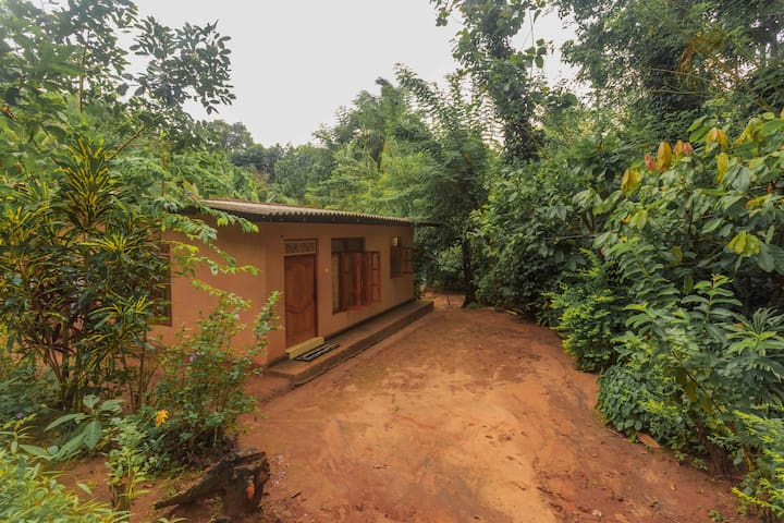 Gamini's Homestay - Palapathwela - Talo