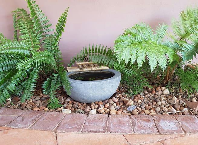 Tropics in the Desert - Braitling - Σπίτι