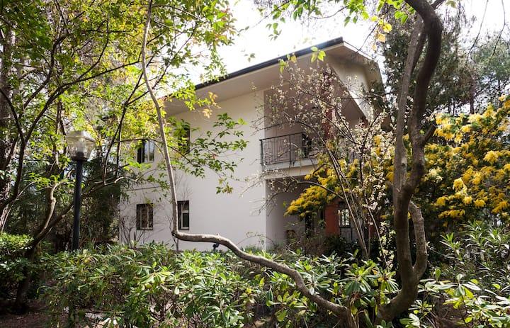 Villa nestled in the woods of Mount Etna.