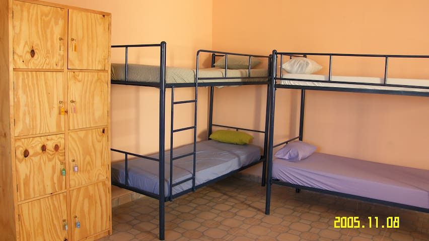 Afree Hostel - Dorm Rooms