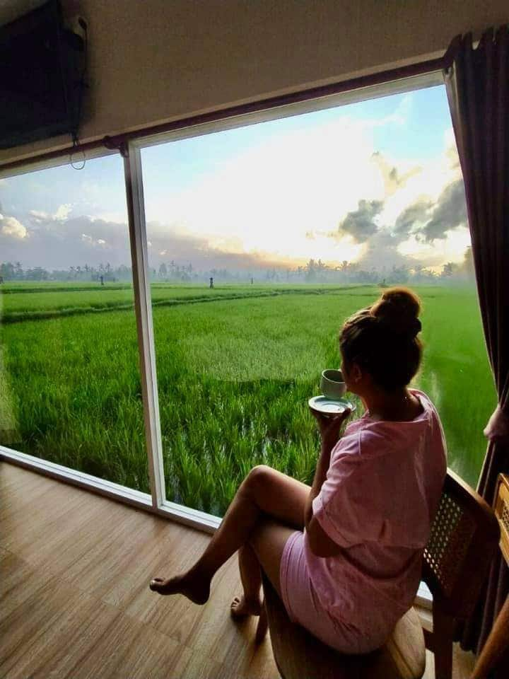 Deluxe Room with Rice Field View #1