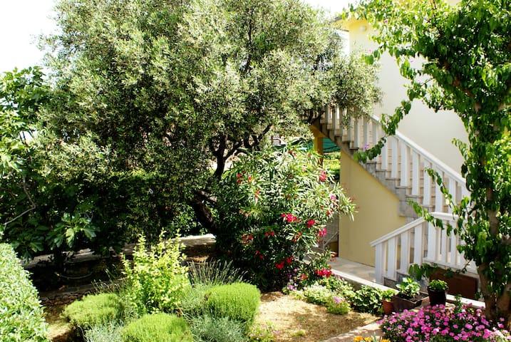 Lovely apartment in greenery - Supetar - Apartemen