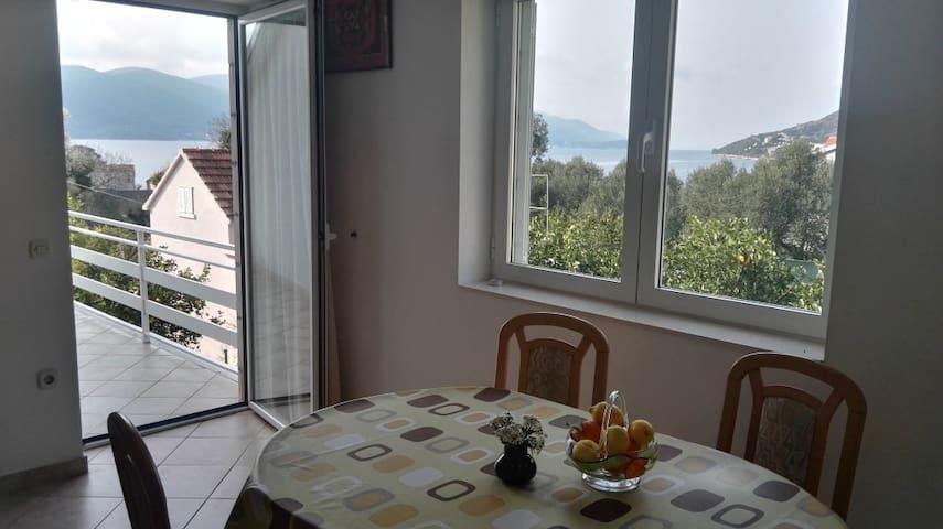 Apartments Frana 1 - Viganj - Appartement