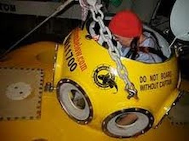Dare to take the yellow submarine 2000 ft under the sea