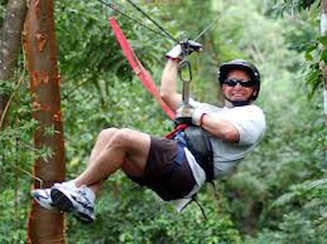Zip line through the trees on this 14 run 1700 ft zip line at the national park
