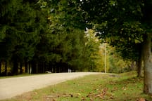 Many great paths and walking trails can be found only minutes from the Barn.