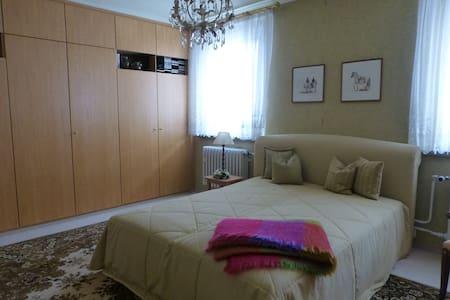 Zweibettzimmer in schöner Stadtlage - Zwickau - House