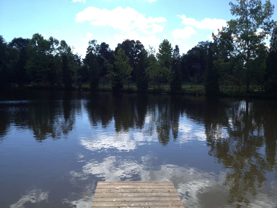 Serene 1 acre lake for fishing and fun.