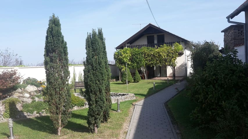 Peaceful place in Pannonian valley - Laslovo - Aamiaismajoitus