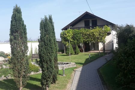 Peaceful place in Pannonian valley - Laslovo - Bed & Breakfast