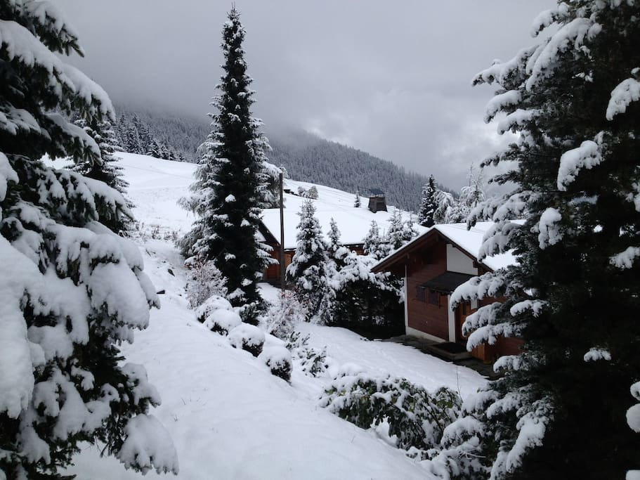 La Rouge piste, ski-in ski-out access