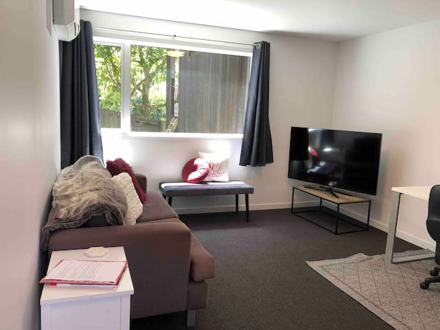 """TV Room - sofa and 55""""TV with freeview channels, TVNZ on demand and Netflix"""