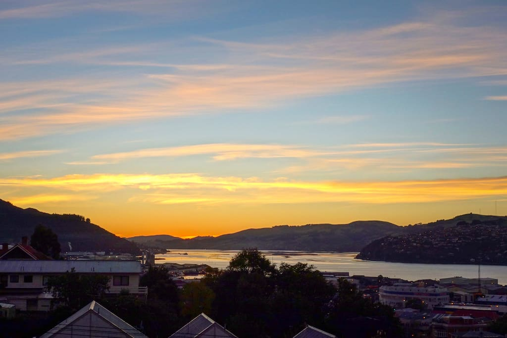 One of the best views in Dunedin
