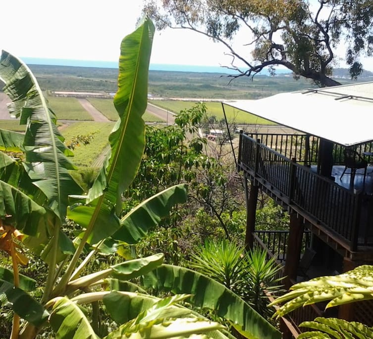 Living area upstairs with large balcony and 2 bedrooms downstairs open onto side verandah.