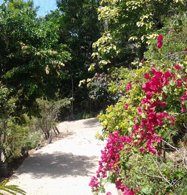 Tropical gardens to stroll in.