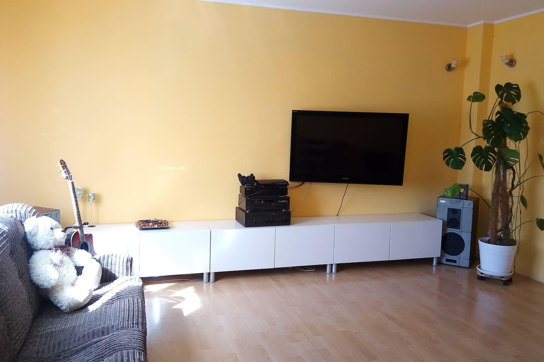 Room 1: double sofa+air matrass available