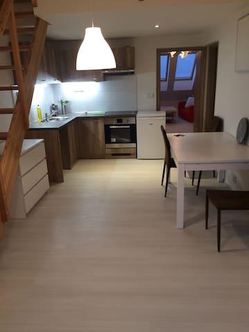 Apartmán Udolní B s balkónem
