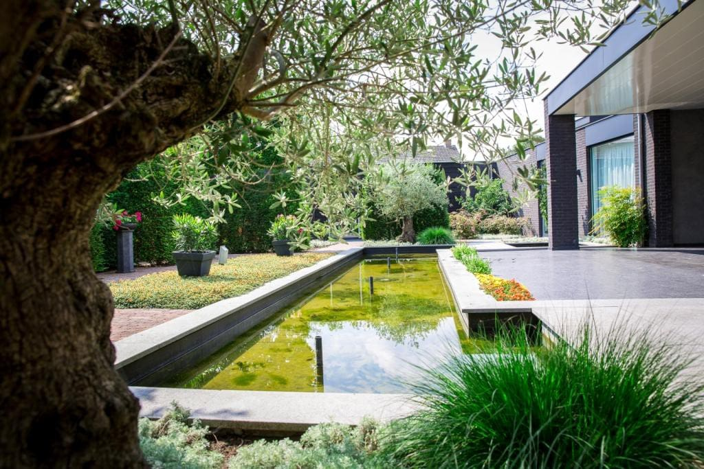 U vindt bij Het Peelhuis een grote tuin met vijver.
