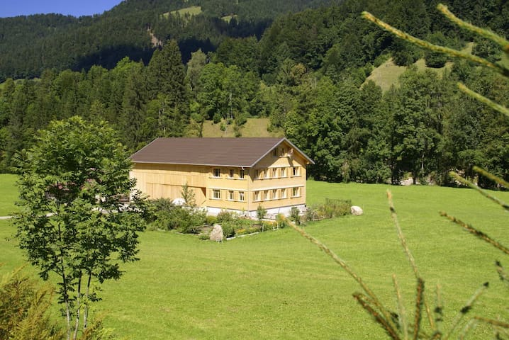 Naturparadies Wildenrain Hittisau - Hittisau - Appartement