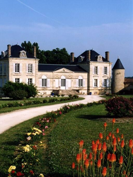 Majestueux château du 19ème – domaine viticole en activité