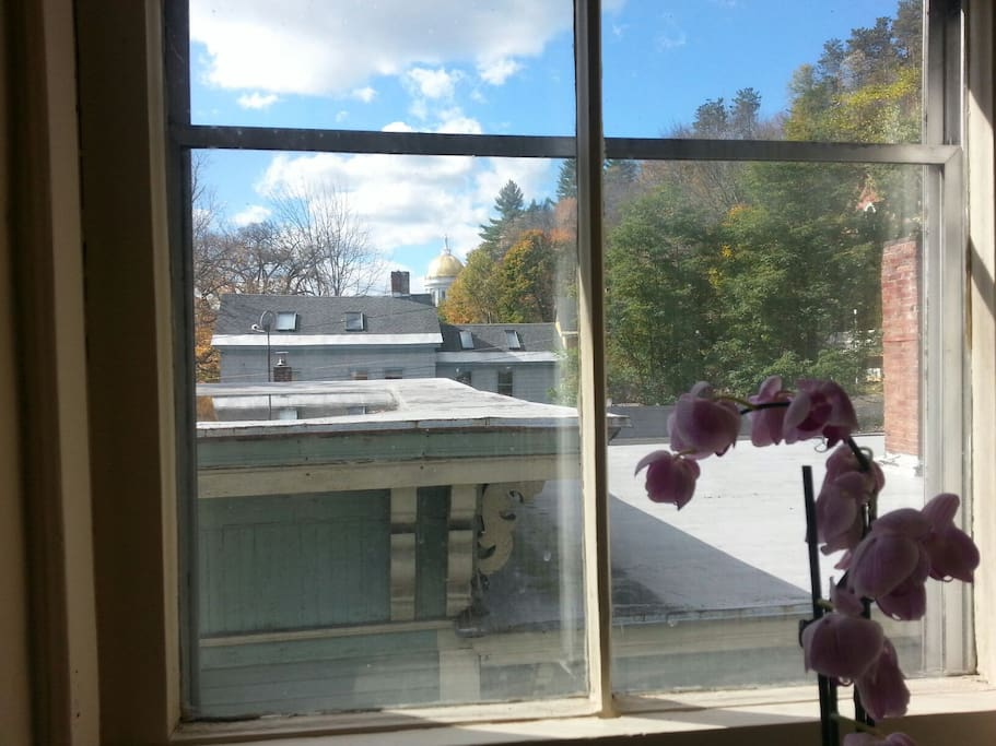 View from the western-facing kitchen window.